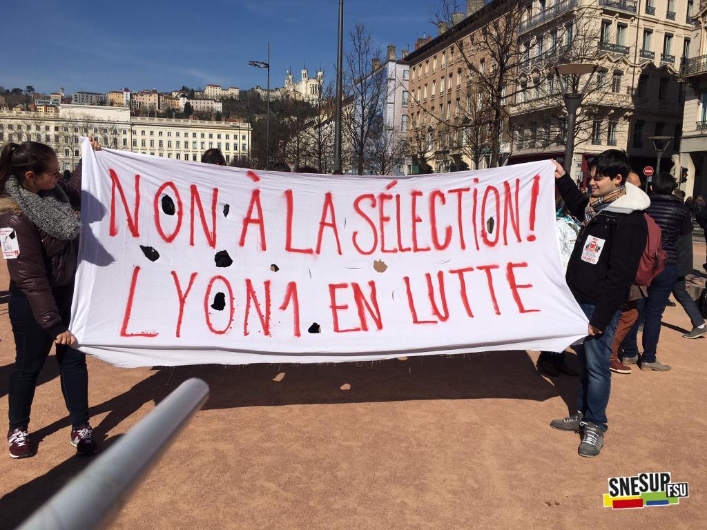 Manifestation de la Fonction publique du 22 mars 2018 - Lyon - Anne Roger